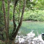 Dory in river