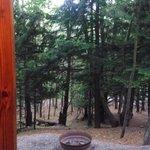 small cabin view
