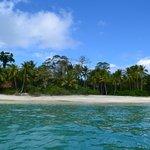 boat trip to Isla Secas