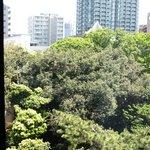 Big panorama view