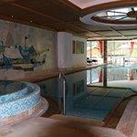 Hotel pool (indoor/outdoor and heated)