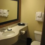 good bathroom with plenty of vanity space