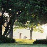 Morning Yoga at Bay Cottage - Sun Salutation