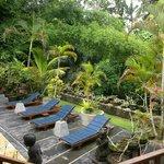 Ketut's Place View
