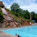 Coronado Springs - Pool