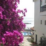Entrance view, Paradise Hotel, Alonissos