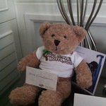 Teddy as welcome gift