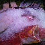 Nicest fish on the village