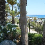 Part of the beach path outside the Amathus