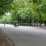 Avenue in Prater district near Ferris Wheel