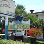Photo of Delfino