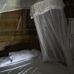 Bed, mossie net