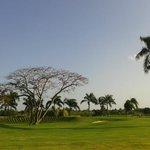 Vista campo de golfe