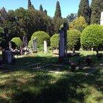 Alte Gräber auf San Michele.