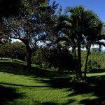 Englische Gartenperfektion in Costa Rica
