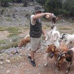 Sam & the goats!