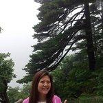 Mount HuangShan on a rainy & foggy day (sob sob)