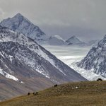 Scene near Khunjerab Pass