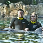 Pictures with our dolphin Aries!!!