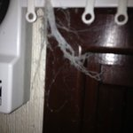 Cobwebs hung everywhere
