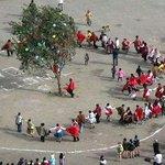 Carnival Tree Cutting