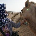 visiting camel farm