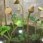 Импровизированные цветки лотоса