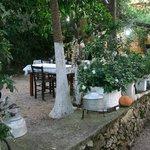 Polyphemus Garten 7