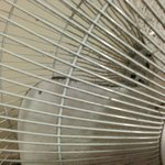 filth in the fan