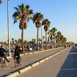 Trilha de Bicicleta