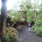 Bar & Office area & Hummingbird Central