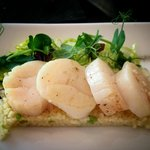 Fabulous scallop dish with couscous, scallops cooked to perfection