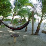 Our favorite area - the hammocks!