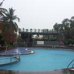 Enjoying rain on pool side.