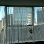 Another photo of the net curtains