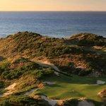 International golf specialists