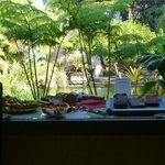 Frühstücksbuffet mit Blick in den Regenwald