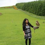 very friendly and safe birds from the North East Falconry Centre ..