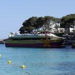Sun Fish cruise