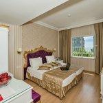 Franch Bed Room