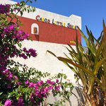 Cabo's Little Secret Foto