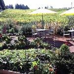 Lynmar Gardens