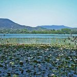 The pristine lake of Banyoles 5 miles from Mas Pelegri