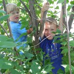 My grandsons playing in the lilac bushes at La Salle!