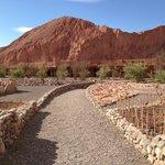 The Alto Atacama grounds