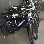 BMW bikes for guests