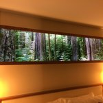 lightbox above the headboard