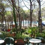 صورة فوتوغرافية لـ Villaggio Camping La Mandragola