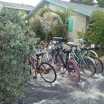 Need a bike??