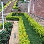 Nice looking hedge along pathway